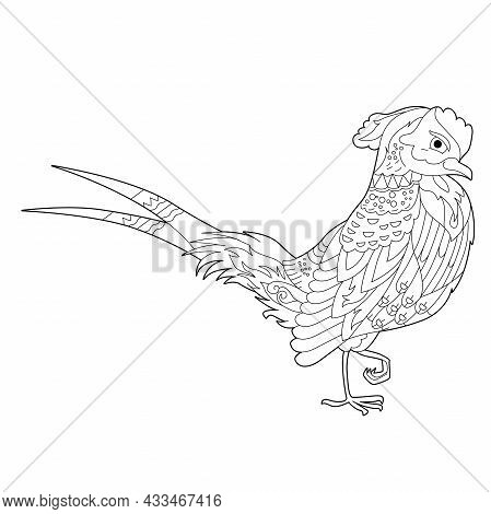 Fancy Bird Pheasant. Black And White Picture. Contour Linear Illustration For Coloring Book With Par