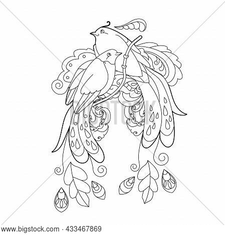 Tropical Fancy Birds. Black And White Picture. Contour Linear Illustration For Coloring Book With Pa