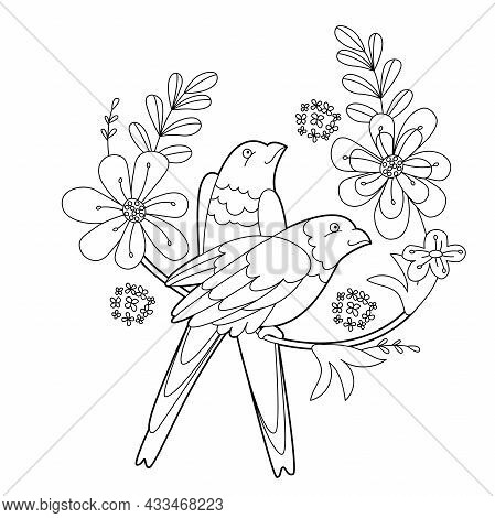 Tropical Fancy Birds. Black And White Picture With Parrots. Contour Linear Illustration For Coloring