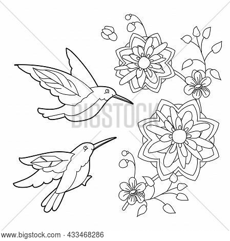 Tropical Fancy Bird. Black And White Picture. Contour Linear Illustration For Coloring Book With Par