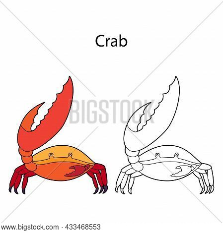 Funny Cute Animal Crab Isolated On White Background. Linear, Contour, Black And White And Colored Ve