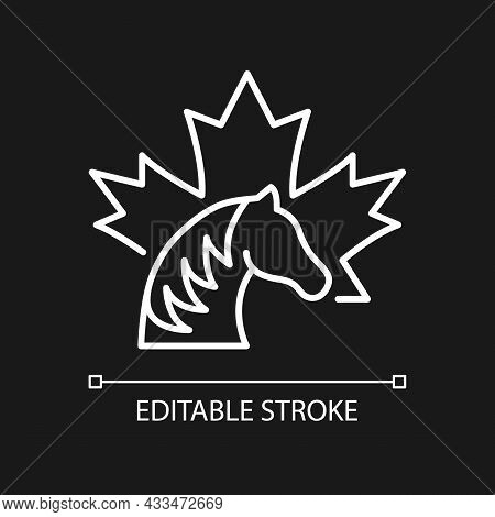 Canadian Horse White Linear Icon For Dark Theme. National Heritage And Symbol Of Canada. Thin Line C
