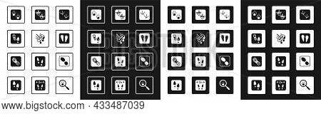 Set Dove Paw Footprint, Mop, Human Footprints Shoes, Paw, Rabbit And Hare, Goose, And Icon. Vector