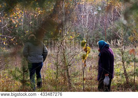 Defocus Back And Side View Of Two Woman Walking In Pine Forest. Mushroom Picking Season, Leisure And