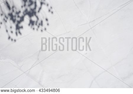 Trending Concept In Natural Materials With Plant Shadow On White Marble Surface. Presentation With D