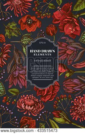Card Design On Dark Background With Viburnum, Hypericum, Tulip, Aster, Leucadendron, Amaryllis Stock