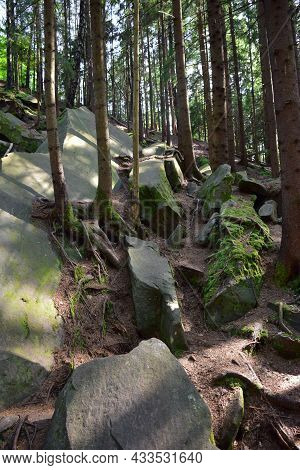A Pile Of Cascading Boulders Covered With Green Moss And Branches In A Dense Mountain Forest