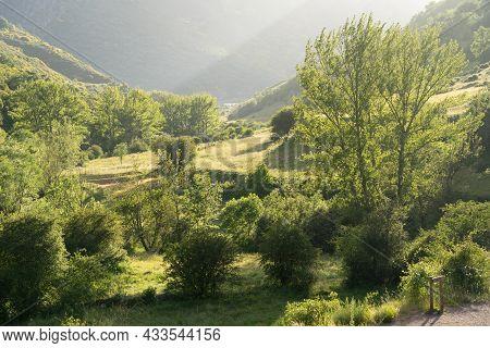 Ciñera Valley Near Beech Forest, Leon, Spain.