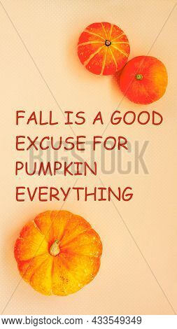 Bright Fall Vertical Backgrounds For Media Stories. Fall Is A Good Excuse For Pumpkin Everything, Te