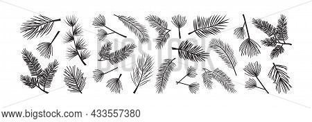 Christmas Tree And Pine Cone, Fir Vector Icon. Evergreen Plant, Pine Branch Set. Black Silhouettes I