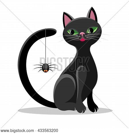 Cat And Spider. Black Tomcat With Big Eyes Look For Spinner, Grapnel Spiders Hanging Vector Illustra