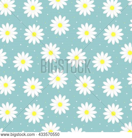 Seamless Pattern With Chamomile Flowers On Blue Background. Daisy Flowers Floral Ornament. Vector Il