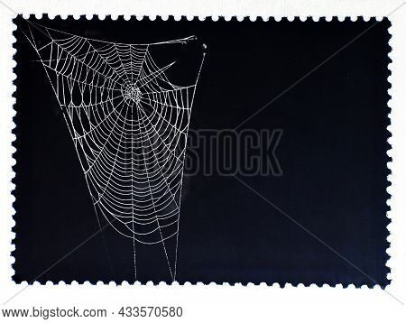 Spiderweb Isolated On Black Postage Stamp. Cobweb Frame. Halloween Party Design. Texture Of Spider W
