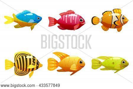 Set Tropical Yellow Fish, Coral Reef Exotic Pet Animal. Collection Aquarium Sea Life, Vector Illusta