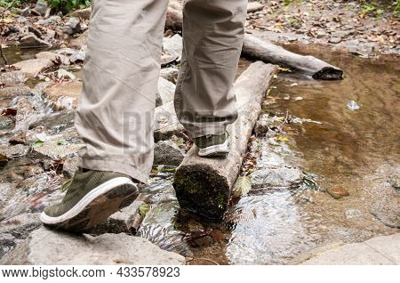 Men's Legs Cross A Forest River On A Log, The Concept Of Tourism
