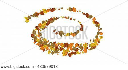 Pattern Bright Colorful Autumn Foliage Isolated On White Background. Graphic Design Autumn Symbol. R