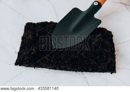 Garden Tools. Gardening Tools On Concrete Background Flat Lay. Plant Flowers For Garden. Tools Spade