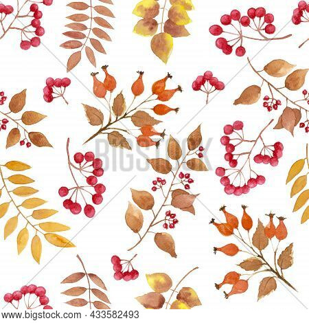Yellow, Brown Autumn Leaves, Berry Fruit Seamless Repeated Pattern On White Color Background, Branch