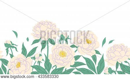 Seamless Horizontal Border With White Peonies On Blank Background. Colorful Blooming Garden Flowers