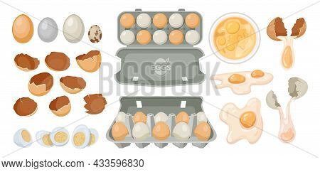Eggs In Carton Box Or Package Tray, Vector Dozen Eggs With Broken Shell. Poultry Farm Product And Fo