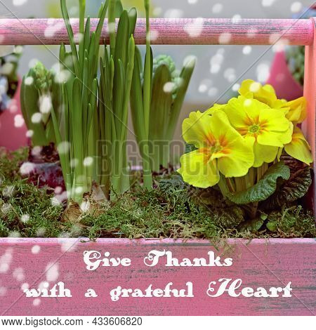 Gratitude Inspirational Quote. Give Thanks With A Grateful Heart. Thanksgiving Concept With Nature B