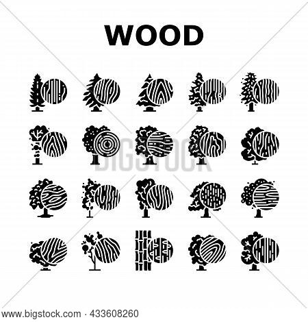Wood Land Growth Natural Tree Icons Set Vector. Cherry And Mango Fruit, Teak And Oak, Spruce And Hem