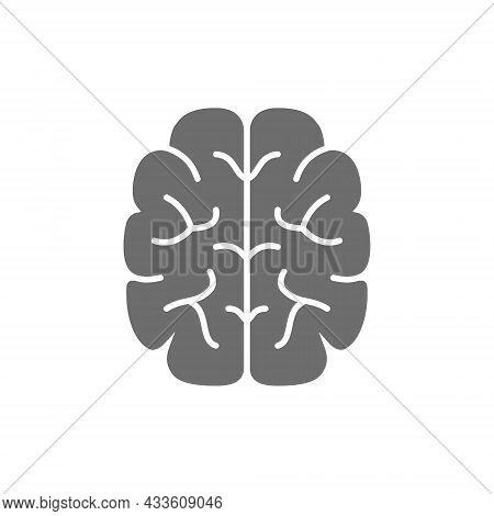 Brain, Mind, Intelligence Grey Icon. Isolated On White Background