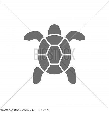 Turtle, Aquatic Animal Grey Icon. Isolated On White Background