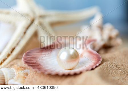 Opened and rare pearl placer on a blue sea background. Luxury and rich marine item.