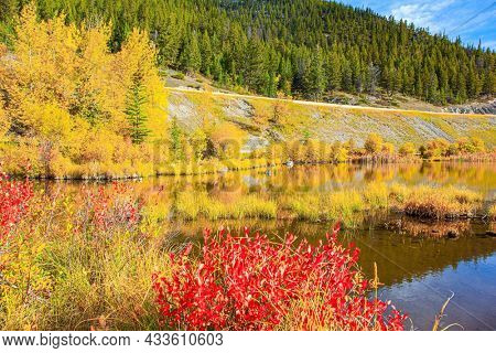 Red, yellow and orange foliage  on the shores of the Lake Vermillon. Indian summer in the Rocky Mountains. Evergreen forests in the mountains of Canada