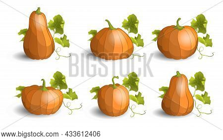 Set Of Pumpkins With Leaves. Thanksgiving Or Halloween Holidays Design Elements. Cartoon Pumpkin Ico