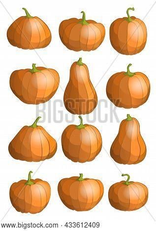 Set Of Pumpkins. Thanksgiving Or Halloween Holidays Design Elements. Cartoon Pumpkin Icons.