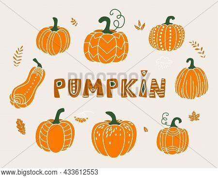 Pumpkin Vector Illustration In Flat Naive Simple Modern Style. Autumn Decorative Gourd For Thanksgiv