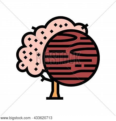 Cherry Wood Color Icon Vector. Cherry Wood Sign. Isolated Symbol Illustration