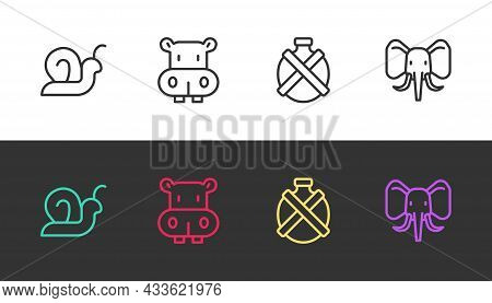 Set Line Snail, Hippo Or Hippopotamus, Canteen Water Bottle And Elephant On Black And White. Vector