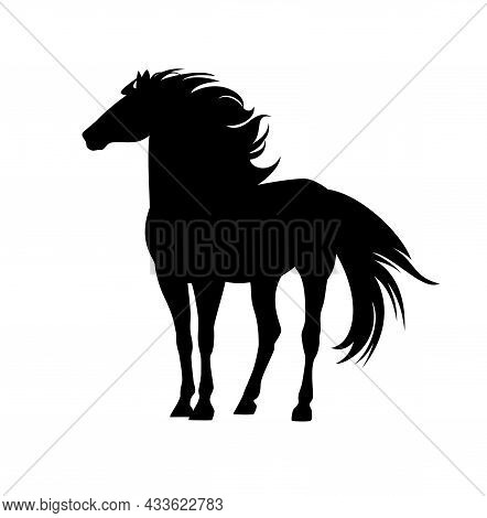 Majestic Mustang Horse With Wind Blown Mane And Tail - Standing Wild Stallion Black And White Vector