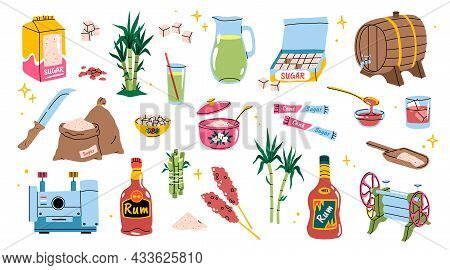 Cartoon Sugarcane. Bamboo Agriculture Products. Sugar And Rum Manufacturing. Tropical Cane Plants Wi