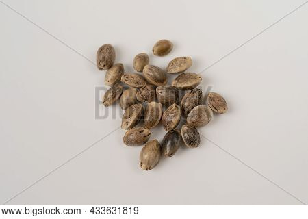 Hemp Seeds On White Background. Hemp Seeds Isolated On White Background, Macro Top View. Close Up Of
