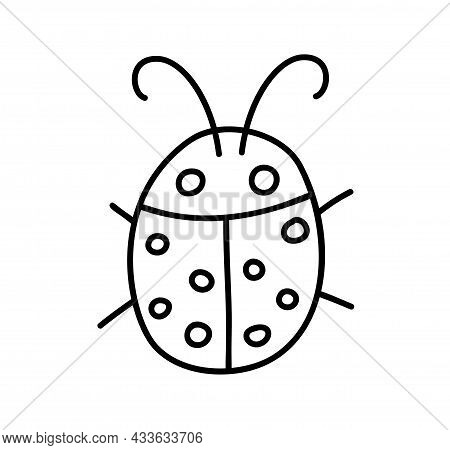 Ladybug Linear Icon. Thin Line Illustration. Ladybird Contour Symbol. Vector Isolated Outline Drawin