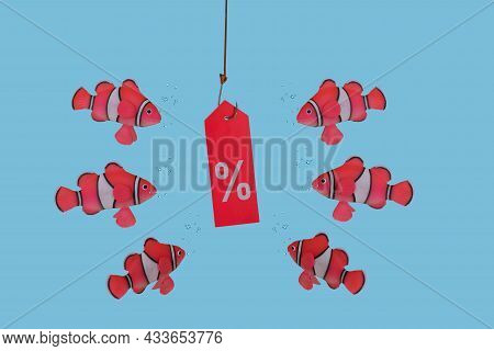 Card With Percent Of Discount Is Hung On Fishing Hook And Fishes Swimming Around. Creative  Sales Co