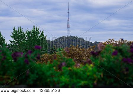 City Telecommunication Tv Tower Background Landscaped Object View With Depressive Autumn Colors Park