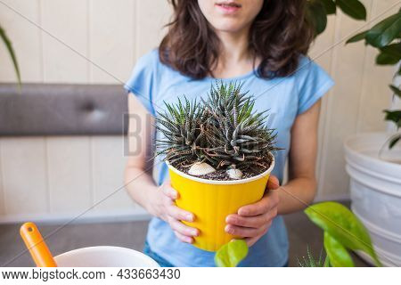 A Woman Holds A Pot Of Succulent In Her Hands, A Girl Sells Flowers, Growing Plants For Sale, A Plan