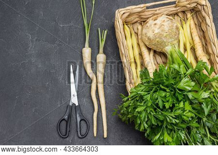 Bunch Of Parsley Leaves. Parsley With Leaves And Roots, Celery Tuber With Leaves In Wicker Basket. S