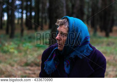 Defocus Portrait Of Russian Grandmother Senior Old Woman Seating In Pine Autumn Forest. Old Women In