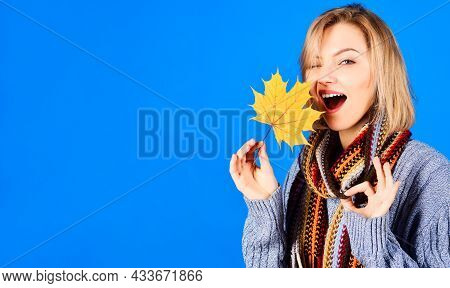 Winking Woman With Leaf Shows Sign Okay. Autumn Mood. Sexy Girl With Yellow Maple Leaves Showing Ok-