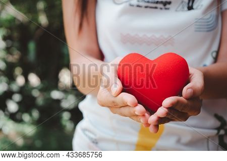 Woman Hand Holding Red Heart With Copy Space, Heart Health Insurance, Charity Volunteer Donation, Cs