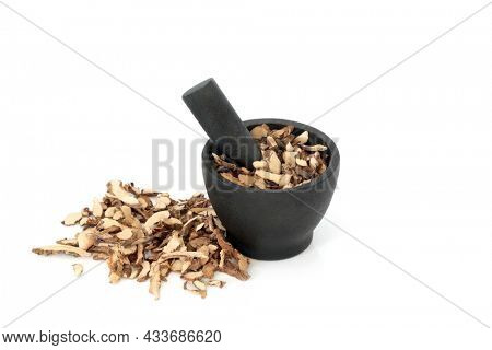 Sweetflag root herb traditional Chinese herbal plant medicine in a mortar. Used for stomach disorders, skin problems, rheumatism and neuralgia. Shi chang pu. Acorus calamus. On white background.