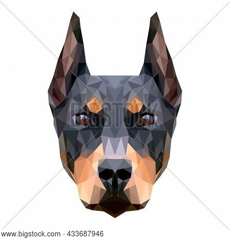 Doberman Dog Face By The Method Of Symmetry. The Face Of Animal Was Created With Hundreds Of Triangl