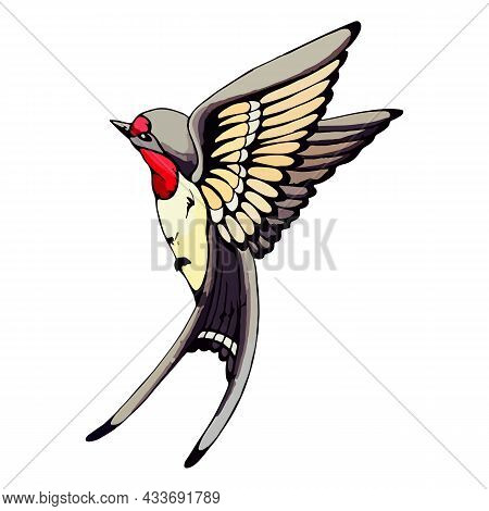 Swallow In Flight With Open Wings. Hand Drawn Rural Swift Is Flying In The Sky. Spring Bird In The A