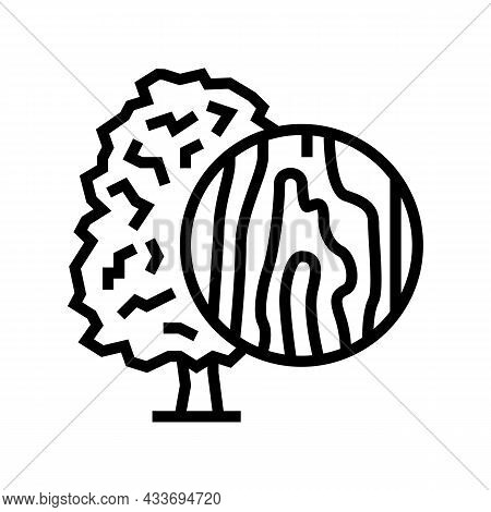 Maple Wood Line Icon Vector. Maple Wood Sign. Isolated Contour Symbol Black Illustration